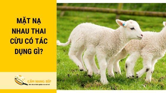 [Review] Top 5 Mặt nạ nhau thai cừu tốt nhất và sự thật về mặt nạ nhau thai cừu. 1