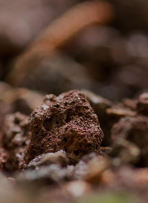 thành phần mặt nạ trị mụn đất sét innisfree